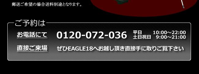 ゴルフ レッスン EAGLE18 オリジナルグッズ キャディーバッグ